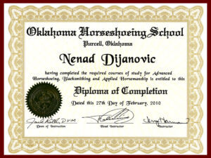 diploma-wallpaper